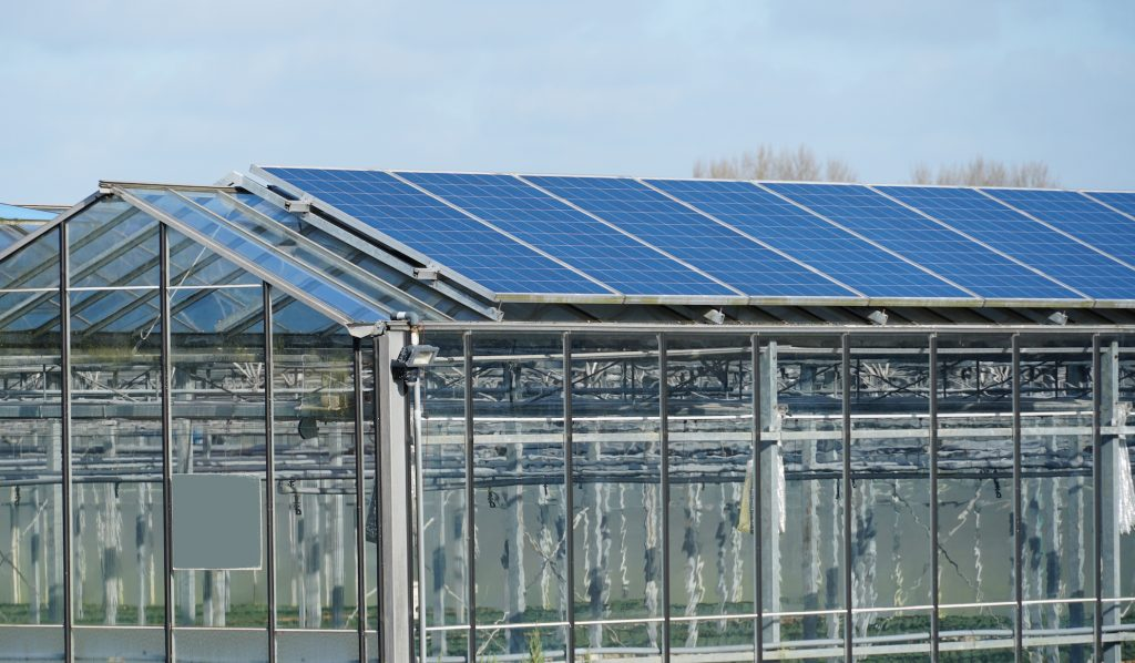 Photovoltaic solar panels installed on a greenhouse in the Netherlands.